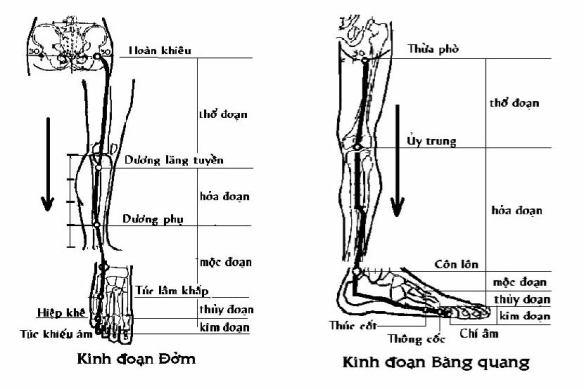 3-4-kinhdoandom-bangquang