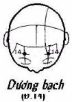 duongbach